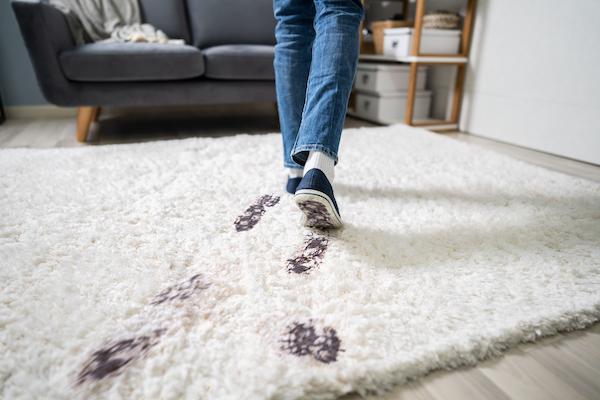 Benefits of Wood Floors